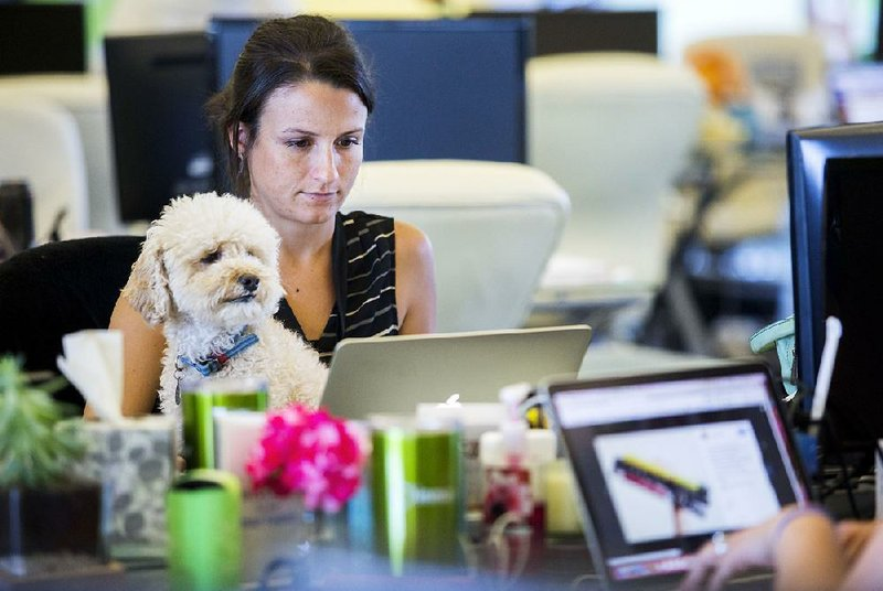 Emotional Support Dogs In The Workplace For Employees With Disabilities
